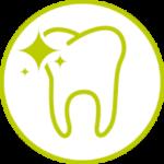 Salud dental mascotas